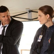 Previously TV: Bones: go read this!