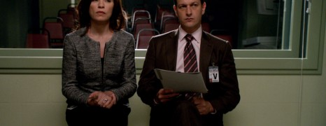 The Good Wife  Recaps Are on Sick Leave