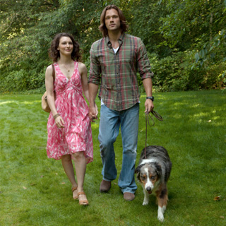 supernatural-sam-amelia-dog-season-8
